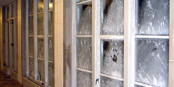 What Does Frosted Windows Indicate Florida Homes